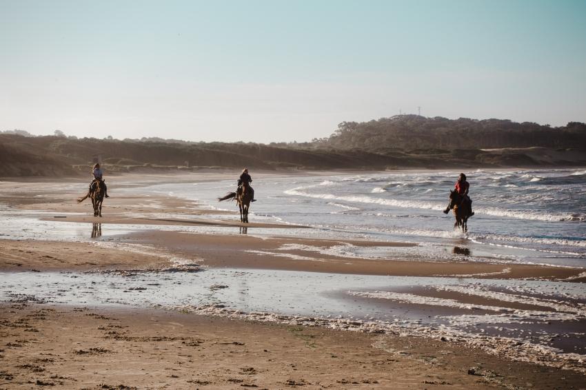 Punta del Diablo, Uruguay's laidback Atlantic paradise