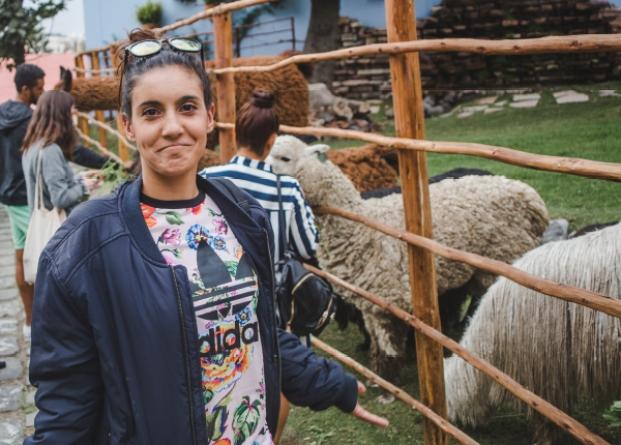 llama world alpaca arequipa what to do go activities animals farm zoo feed peru travel guide 2018