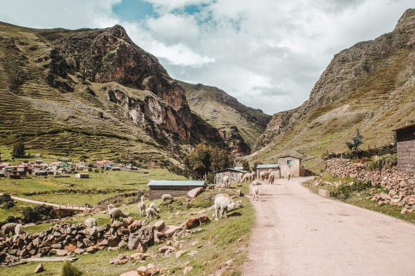 rainbow mountain montana de siete colores peru cusco valley red lllamas typical peruvian village farm rural peru south america